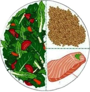 balanced macro-nutrients feed a healthy diet-brain connection