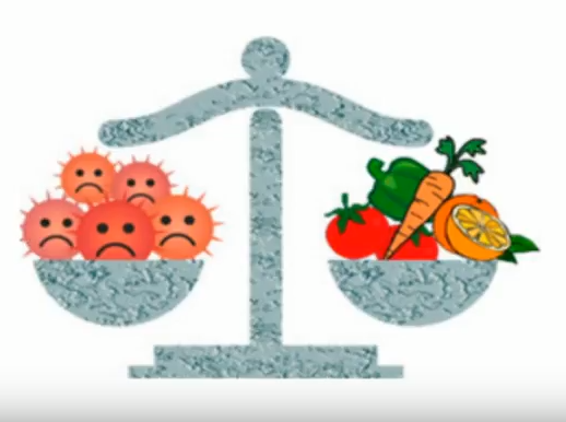 fruits and vegetables in a balance with free radicals