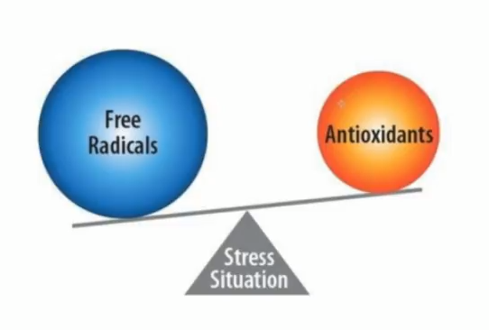 Heart Health is threatened by an imbalance of free radicals